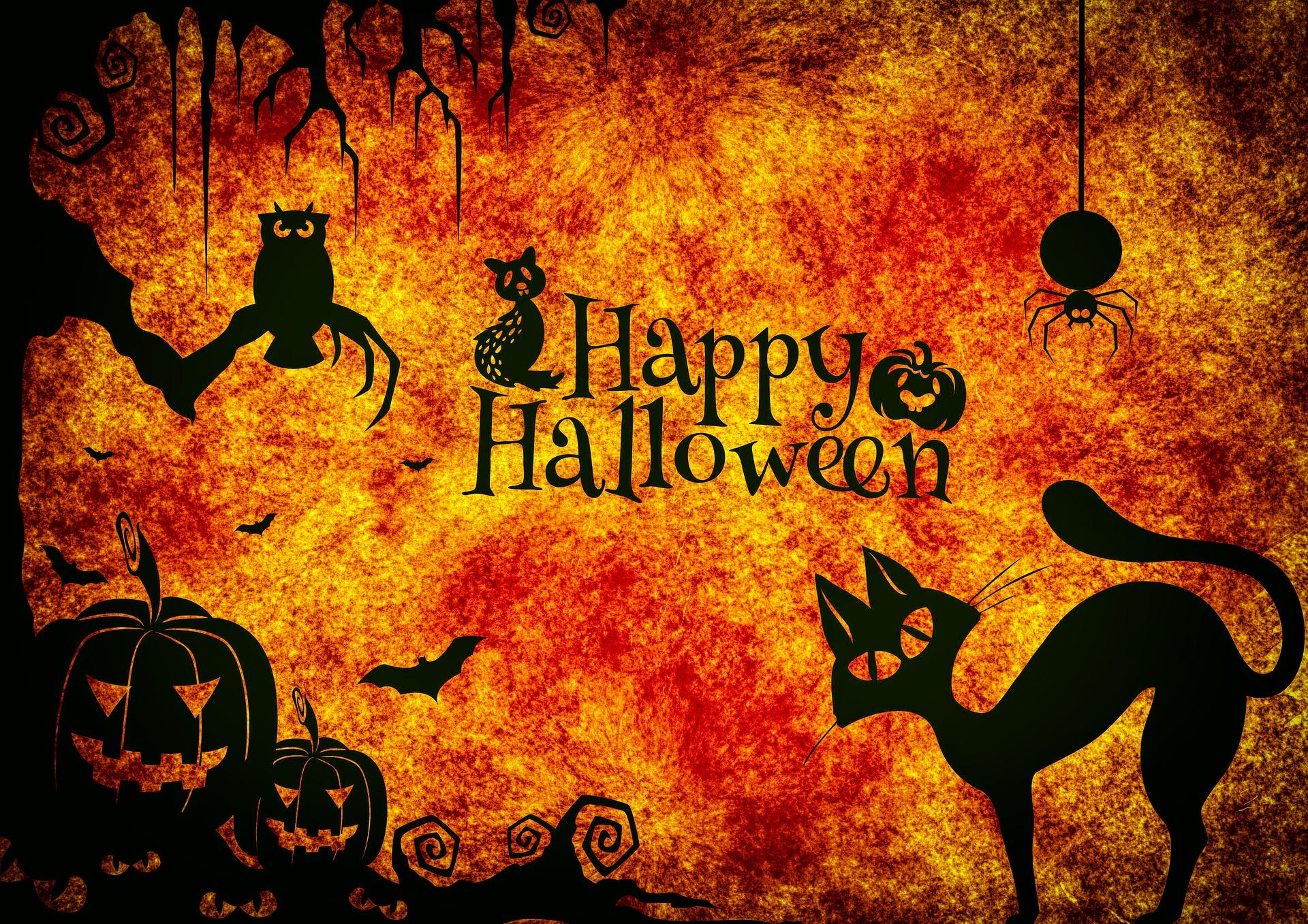 Besondere Halloween-Karten mit dem WOW Effekt